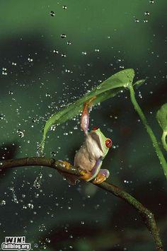 Singin' in the rain..