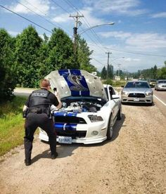 POLICIAS DESMADRADOS - EN TU CARA ME RIO