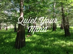 i you're too busy talkin' / you're not busy listenin' / to hear what the land has to say. Quiet Your Mind---Zac Brown Band