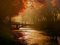 autumn-photography-2-10__880