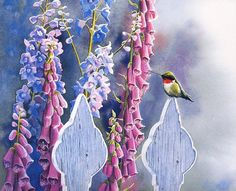[EndLiss scans - Wildlife Art] Susan Bourdet - Rubies and Foxgloves