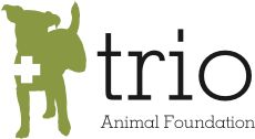 Trio Animal Foundation: this organization uses donations to provide emergency medical support to homeless and abused animals