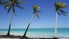 Escondida na Costa dos Corais - entre Maceió e Recife -, a antiga colônia de pescadores é um refúgio... - Reprodução