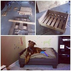 DIY Holz Hundebetten aus Europaletten - pallet dog bed…one of the pallet projects I might actually do. Leroy needs this. Diy Pallet Projects, Pallet Ideas, Wood Projects, Diy Pour Chien, Pallet Dog Beds, Pallet Couch, Diy Dog Bed, Homemade Dog Bed, Pet Beds Diy