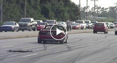 Condutor De Mustang GT Perde Controlo Do Carro e Quase Atropela Grupo De Pedestres http://www.desconcertante.com/condutor-de-mustang-gt-perde-controlo-carro-e-quase-atropela-grupo-de-pedestres/