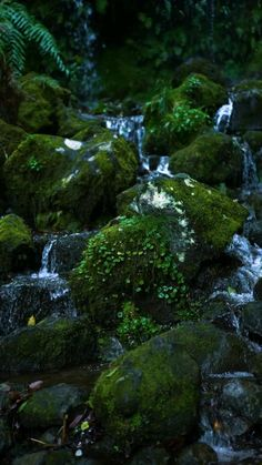 Beautiful Landscape Wallpaper, Beautiful Landscapes, Beautiful Photos Of Nature, Amazing Nature, Forest Photography, Landscape Photography, Nature Gif, Applis Photo, Nature Aesthetic