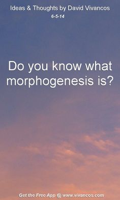 "June 5th 2014 Idea, ""Do you know what morphogenesis is?""  https://www.youtube.com/watch?v=j2Oc-6w1-4w #quote"