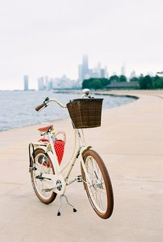 Perfect for cruising around the city--It's even got a basket for all your shopping. Make sure you lock this beauty up with Skylock!