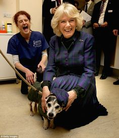 Dressed in a purple tartan jacket and pleated skirt Camilla looked delighted to be introduced to recovering animals, particularly the royally named Kingy