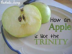 Trinity = Apple God the Father is the skin that protects us,  Jesus is God made man  (in the flesh) and the seeds are the Holy Spirit and allows the word of God to grow in our hearts.
