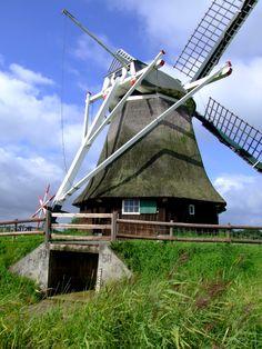 Die Wedelfelder Mühle ist eine Wasserschöpfmühle und befindet sich in Neustadtgödens.