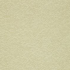 Ribbon Coral (ZCSC312127)   Cascade Vinyl Wallpapers