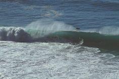 📌 Gray and Blue Sea - new photo at Avopix.com    ▶ https://avopix.com/photo/45937-gray-and-blue-sea    #grey whale #ocean #baleen whale #whale #body of water #avopix #free #photos #public #domain