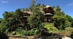 Casas de bambú tipo casa del árbol