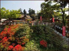 Tsutsuji Shrine, Kurume, Japan; our son's home