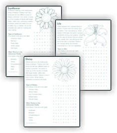 One of the requirements for the Junior Girl Scout Flower badge is to go on a flower search in your neighborhood. This might not always be realistic depending upon the time of year or where your live. We've provided you with another option so your troop can still earn this enjoyable badge. Use our printables and go on a flower search! Free printable download available at MakingFriends.com