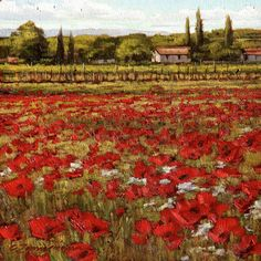 Tuscan Red Poppy Field Painting  Poppies in a Tuscan Breeze by Caroline Zimmermann,  Oil on Board, 23cmx23cm