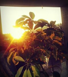 Lindo pôr do sol em Nilópolis