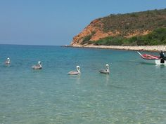 Playa Cautaro en Mochima