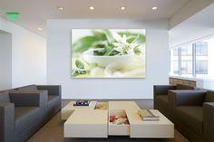 Koop 'Voorjaar gemaakt van dromen' van Tanja Riedel voor aan de muur.