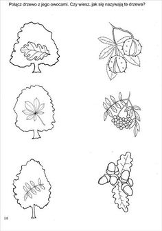 Használja a nyilakat, kapcsoló a lejátszott kép Autumn Activities For Kids, Environmental Education, Preschool Worksheets, Sketches, Fall, Montessori, Coloring, Decoration, Autumn