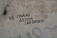 la vie en rose pinterest: alexabas  instagram: alexandrabasv