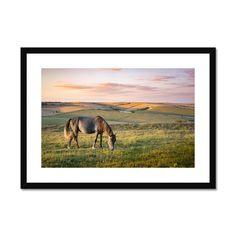 Cissbury View Framed & Mounted Print – Trigger Image Buy Prints, Prints For Sale, Framed Prints, Us Images, Satin Finish, Clean Lines, Fine Art Paper, Landscape, Window