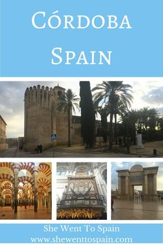 Córdoba is well known for it's ancient cathedral/mosque. Sharing the same building side by side is both a Catholic cathedral and Muslim mosque.