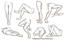 Legs anatomy and positions