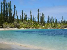 ile des pins, nouvelle caledonie Travel Words, Destin Beach, Summertime, Paradise, Pins, River, Island, Places, Nature