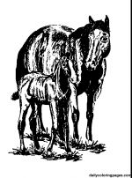 200 Best Western Horse Coloring Pages Images Coloring Pages