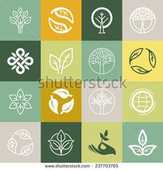 Vector set or organic signs and logo design elements - eco and bio emblems - stock vector