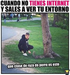 Más Funny Spanish Memes, Spanish Humor, Funny Jokes, Hilarious, Funny Images, Funny Photos, Mexican Memes, Bts Memes, Comedy Memes