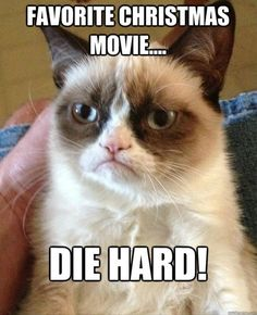 Grumpy Cat loves Christmas movies