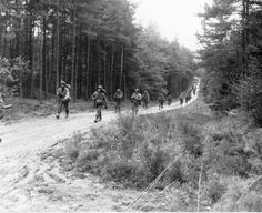 Soldiers of F Company moving up into position in the Hurtgen Forest, 18 November 1944. They were about to partake in the bloody fighting around Hamich, Germany, one of the toughest battles for the regiment in the entire war.
