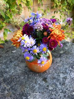 Verbena, Michaelmas daisys, Yarrow and Crysanthamums
