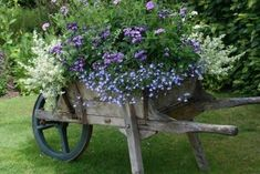 garden: Garden Ideas, Wheelbarrow, Yard, Outdoor, Gardening, Gardens, Flowers, Wheel Barrel