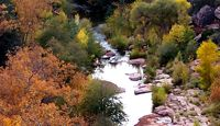 Sedona Reãl        Best Rate Guarantee         Reservations         Contact         Newsletter Sign-Up         Accommodations      Specials & Packages      Photo Gallery      Explore Sedona      News & Events      Maps & Directions