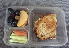 Bento Box: black grapes, honeycrisp apple slices, toasted bacon cheese sandwich, organic celery sticks, organic raw baby carrots Lunch Box Idea