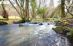 By the stream, Gloucestershire Tub, Photographs, Outdoor Decor, Bath Tub, Photos, Photograph, Fotografie, Bathtubs, Cake Smash Pictures