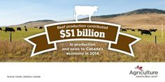 Fact photos | Categories | Agriculture More Than Ever