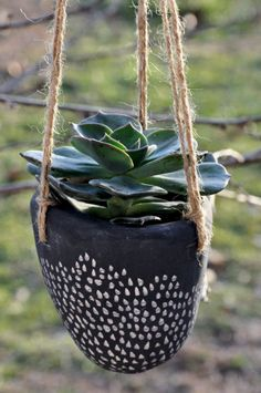 LOVE these earthenware planters
