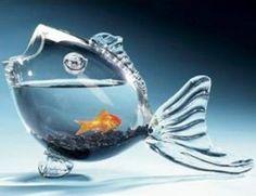 Pecera pez:  Bueno algo muy singular y original, si vemos este gran diseño para una pecera creo que puede ser un extraordinario toque de distinción.
