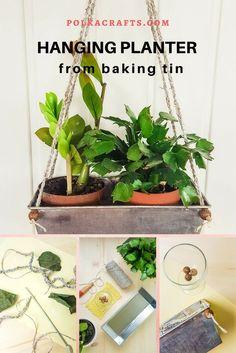 Baking Tin Repurposed to Hanging Planter