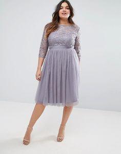 Little Mistress Plus Short Sleeve Lace Bodice Mini Dress With Tulle Skirt