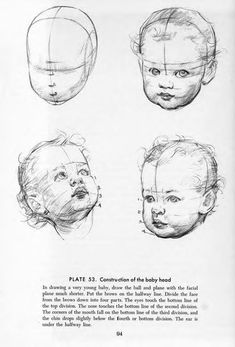 Drawing the Head & Hands