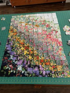 This particular photo is an obviously inspiring and spectacular idea Bargello Quilts, Scrappy Quilts, Bargello Quilt Patterns, Wool Quilts, Colchas Quilting, Quilting Projects, Quilting Ideas, Quilt Block Patterns, Quilt Blocks