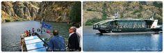 Cruceros Ambientales en Arribes del Duero y Lago de Sanabria Grand Canyon, Douro, Fauna, Aquatic Ecosystem, Natural Playgrounds, Cruises, Countries, Cities