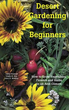 Desert Gardening for Beginners: How to Grow Vegetables, Flowers and Herbs in an … - Container Gardening Growing Tomatoes In Containers, Vegetable Garden For Beginners, Indoor Vegetable Gardening, Organic Gardening, Gardening For Beginners, Growing Vegetables, Desert Garden, Container Gardening, Arizona Plants
