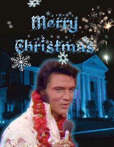 Elvis Elvis Presley Memories, Elvis Presley Priscilla, Elvis Presley Graceland, Elvis Presley Family, Holiday Pictures, Great Pictures, Elvis Presley Christmas, Are You Lonesome Tonight, Elvis Presley Pictures